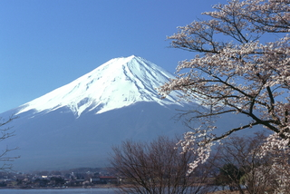 桜と富士山.JPG